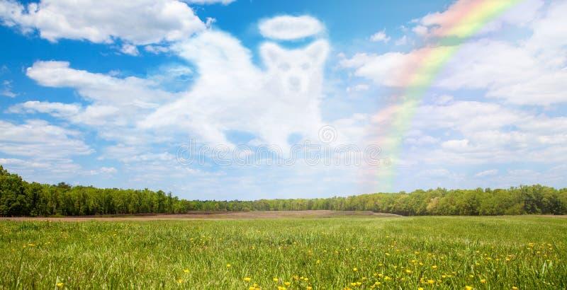 Hond die over Regenboogbrug overgaan stock afbeeldingen