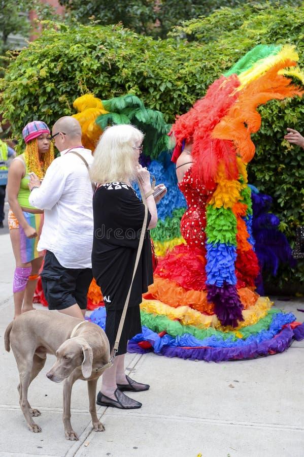 Hond en Belemmeringsqueens in Regenboogkleding Vrolijk Pride Parade stock foto