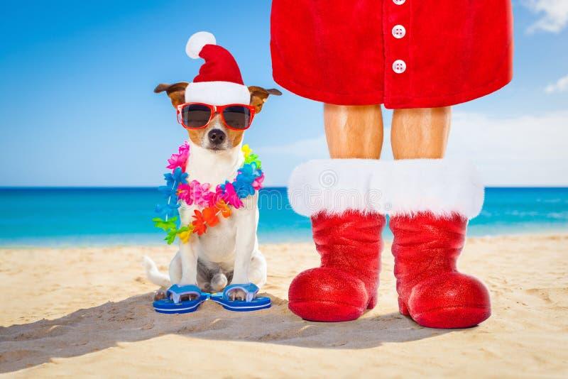 Hond en eigenaar als Kerstman op Kerstmis bij het strand royalty-vrije stock afbeeldingen