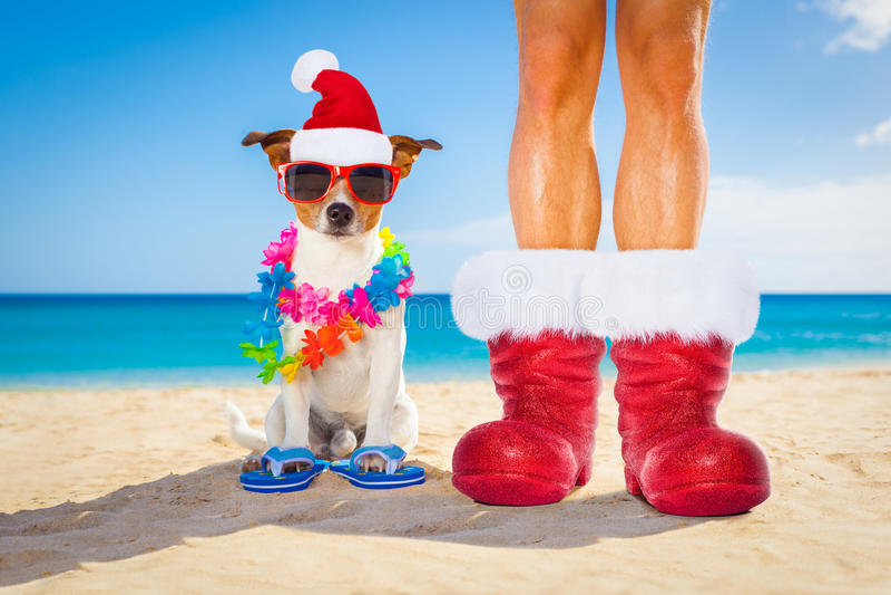 Hond en eigenaar als Kerstman op Kerstmis bij het strand stock afbeelding