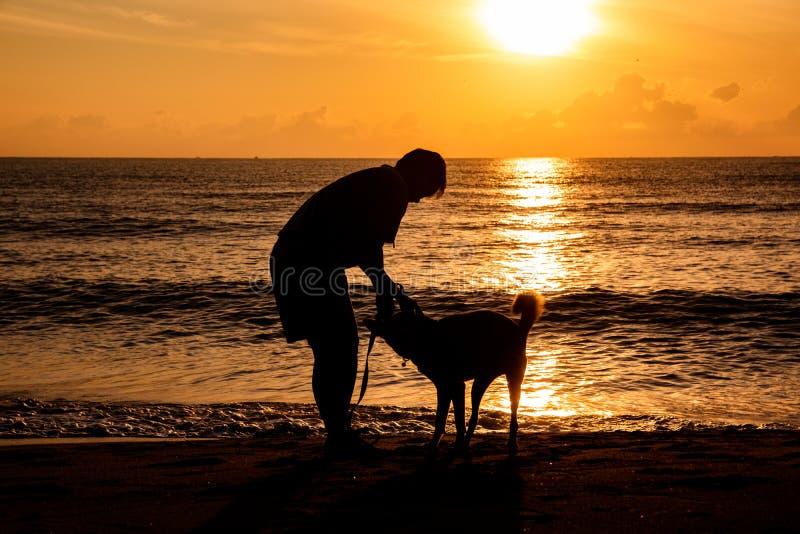Hond en eigenaar die en samen op het overzeese strand met mooie zonlichtachtergrond lopen spelen in de ochtendvakantie stock foto's