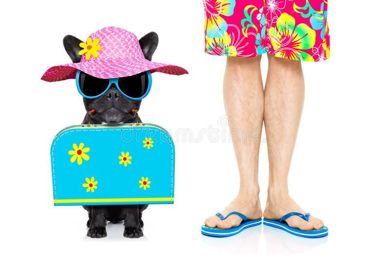 Hond en eigenaar op vakantievakantie royalty-vrije stock afbeeldingen