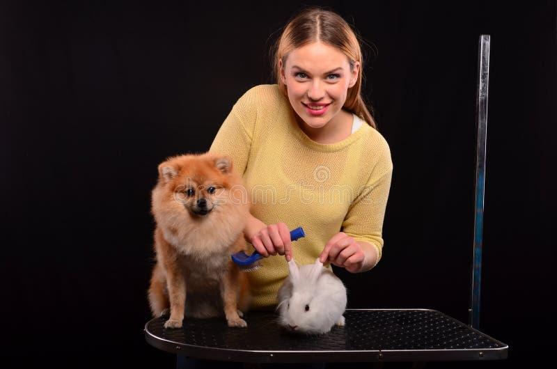 Hond en konijntjes het verzorgen stock fotografie