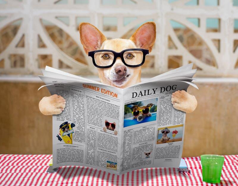 Hond eten de lijst met voedselkom stock afbeelding