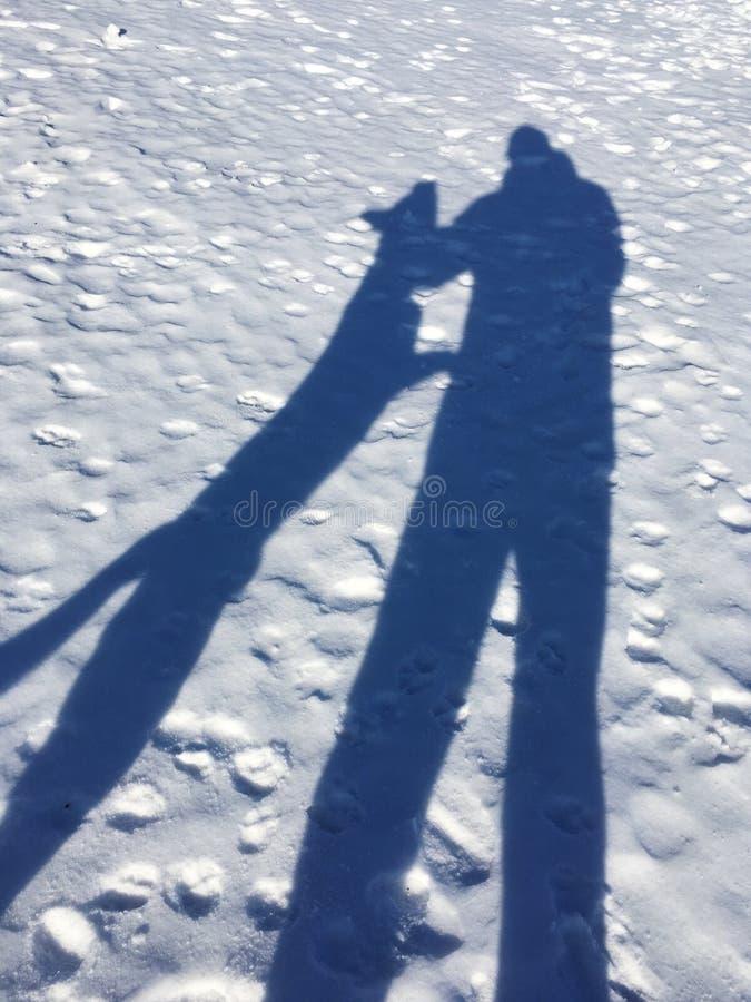 Hond het aanvallen mensenschaduw op een sneeuw royalty-vrije stock foto's