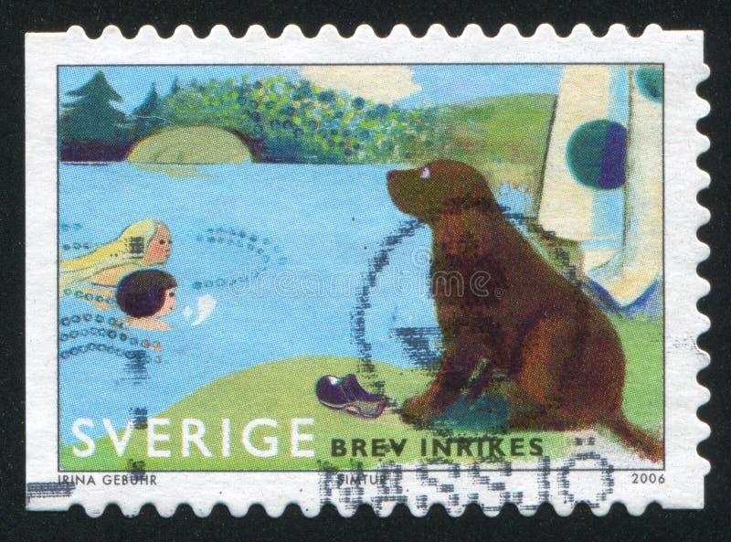 Hond lettende op zwemmers stock afbeeldingen