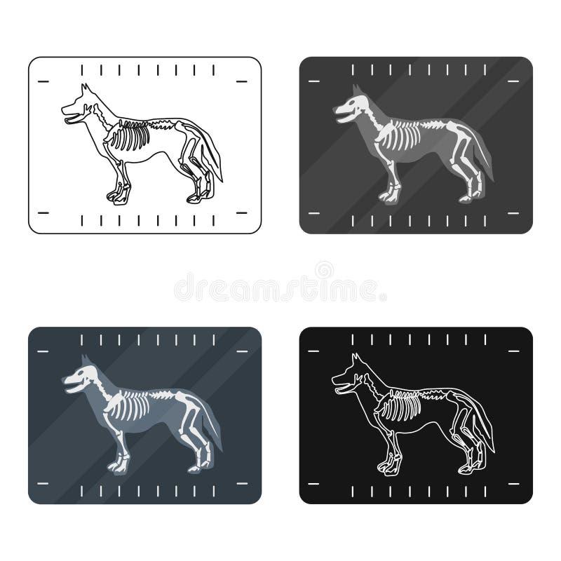 Hond x-ray pictogram in beeldverhaalstijl op witte achtergrond wordt geïsoleerd die Veterinaire de voorraad vectorillustratie van vector illustratie