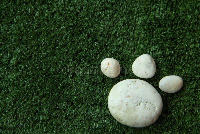 Hond` s poot van kiezelsteensteen wordt gemaakt op groen gras dat royalty-vrije stock afbeelding