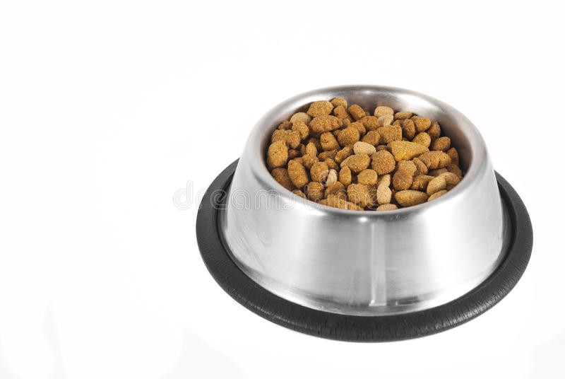 Hond-voedsel in een kom stock foto's