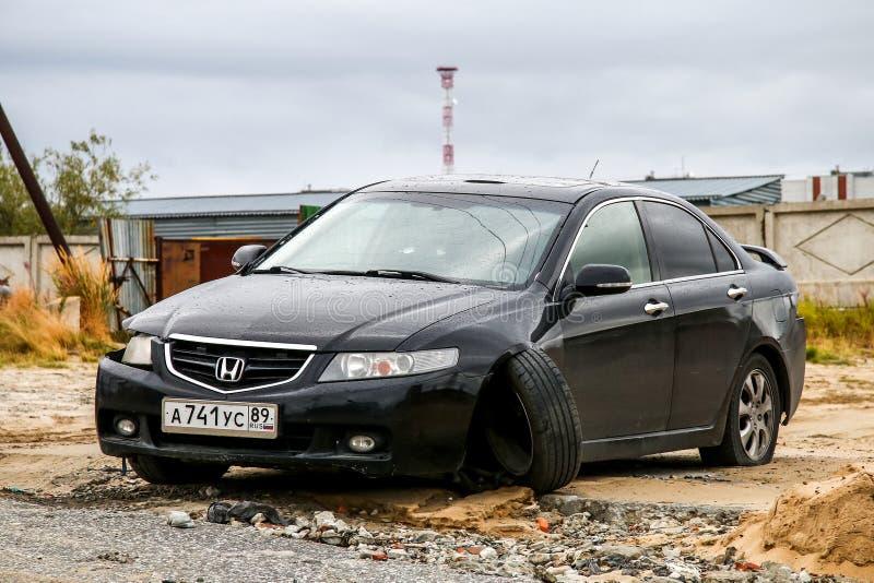 Honda Accord fotografia de stock