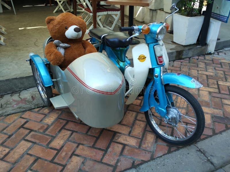 Honda-welp met teddybeer royalty-vrije stock afbeeldingen