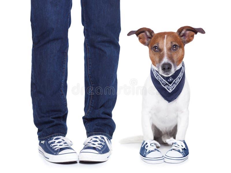 Hondeigenaar en hond stock foto's