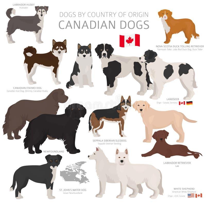 Honden door land van herkomst Canadese hondrassen Herders, de jacht, het hoeden, stuk speelgoed, het werk en geplaatste de dienst vector illustratie