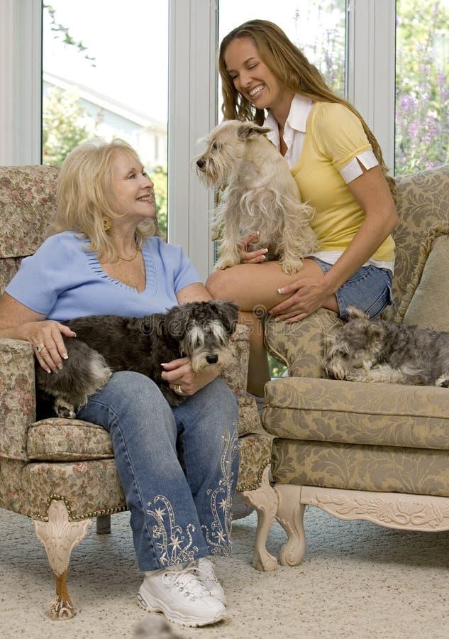 Honden en familie royalty-vrije stock afbeelding