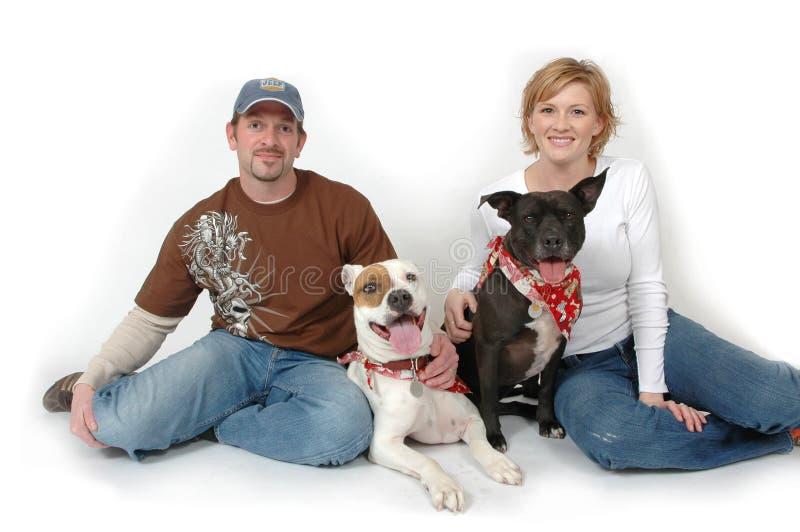 Honden in het Midden royalty-vrije stock afbeeldingen