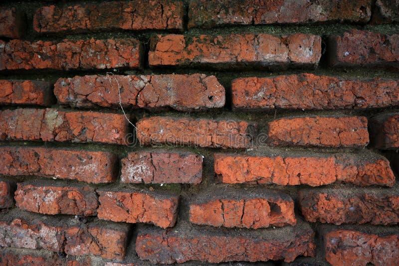 Honderden jaren oude rode bakstenen muren zijn nog intact en duurzaam stock afbeeldingen