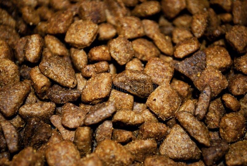 Hondevoer royalty-vrije stock afbeeldingen