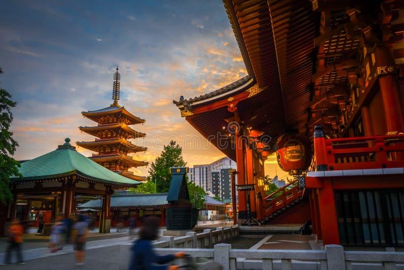 Hondo und Pagode bei Sonnenuntergang in Senso-jitempel, Tokyo, Japan stockbild