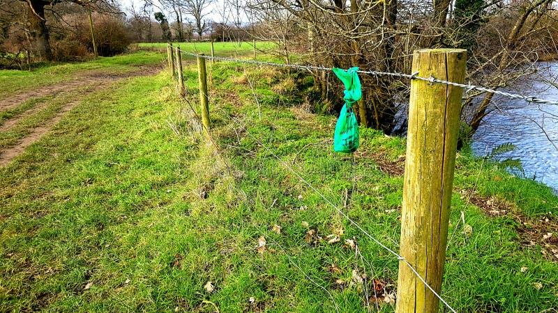 Hondpoo doet een smet op het platteland in zakken stock foto's