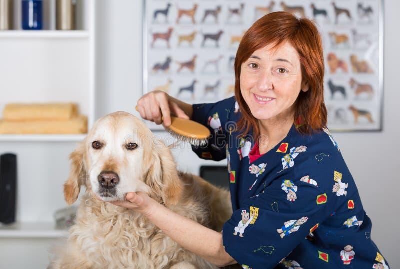 Hondskapper royalty-vrije stock afbeeldingen