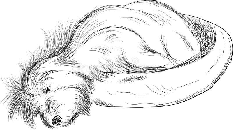 Hondslaap stock illustratie