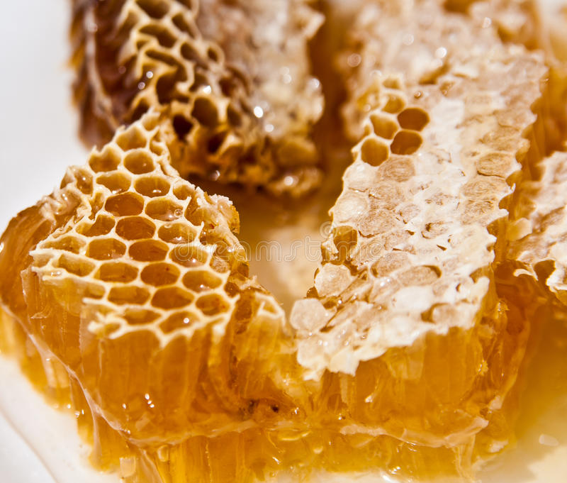 Honey. Stacks of honey comb on a plate