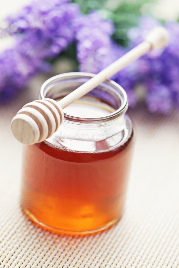 Download Honey stock image. Image of gourmet, flower, golden, remedy - 23368737