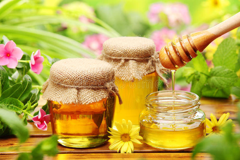 Honey royalty free stock photo