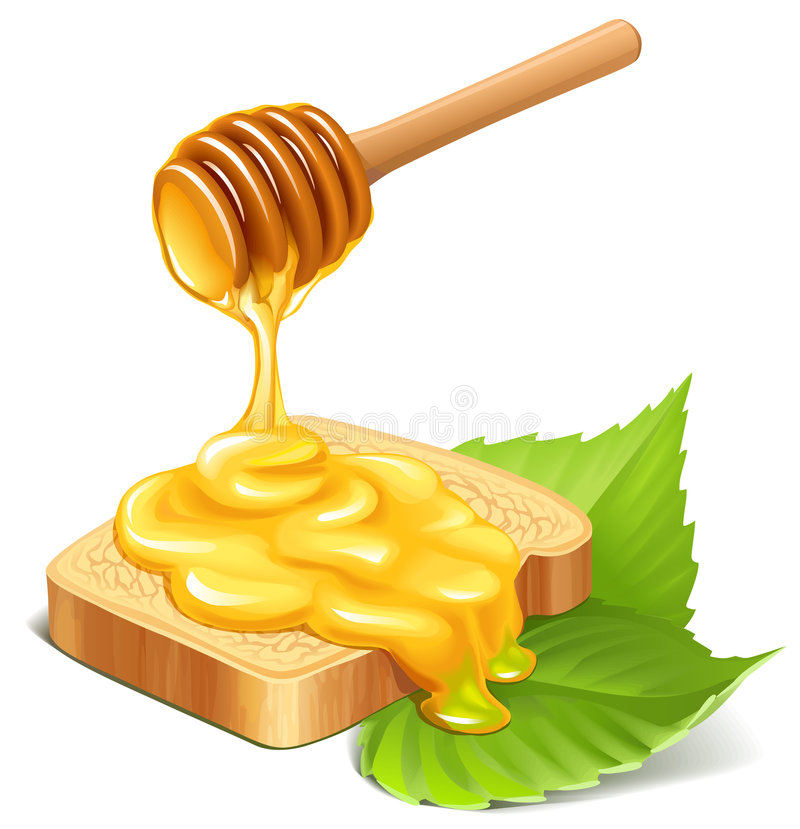 Honey. Illustration of honey dripping on a bread slice and green leaves