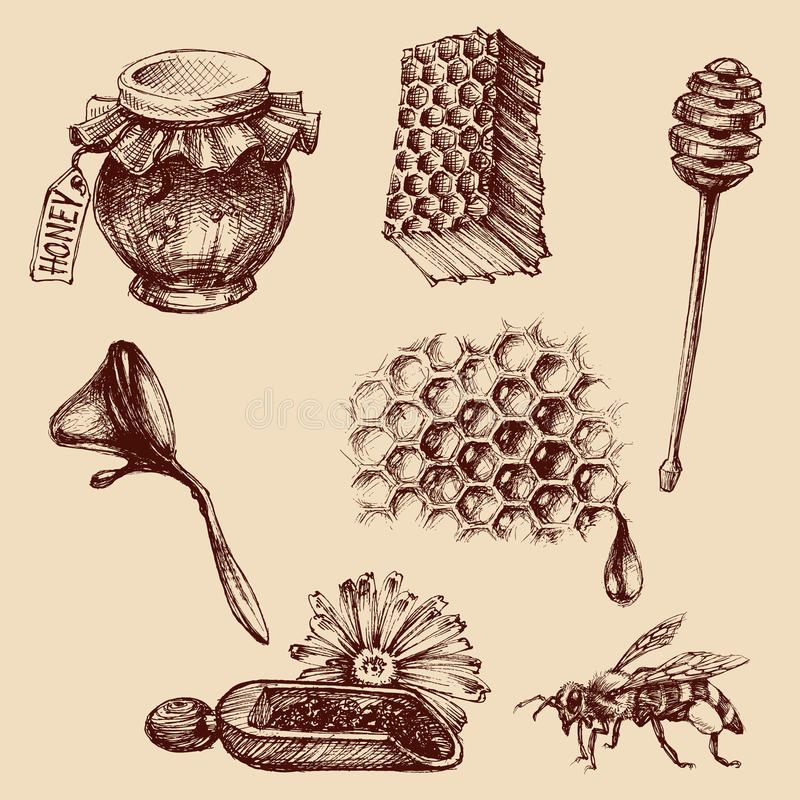 Free Honey And Apiculture Set Royalty Free Stock Photography - 75255007