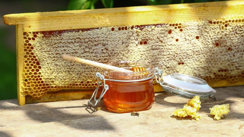 Honey Background Miel frais dans le bac Image authentique de mode de vie Vue supérieure L'espace libre pour le texte image libre de droits