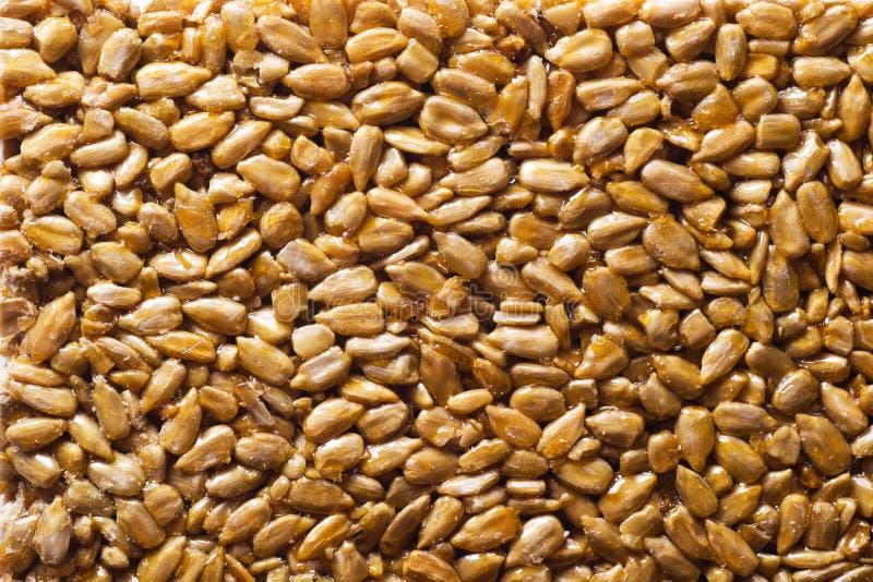 Download Honey bars stock image. Image of seed, honey, snack, breakfast - 29360057