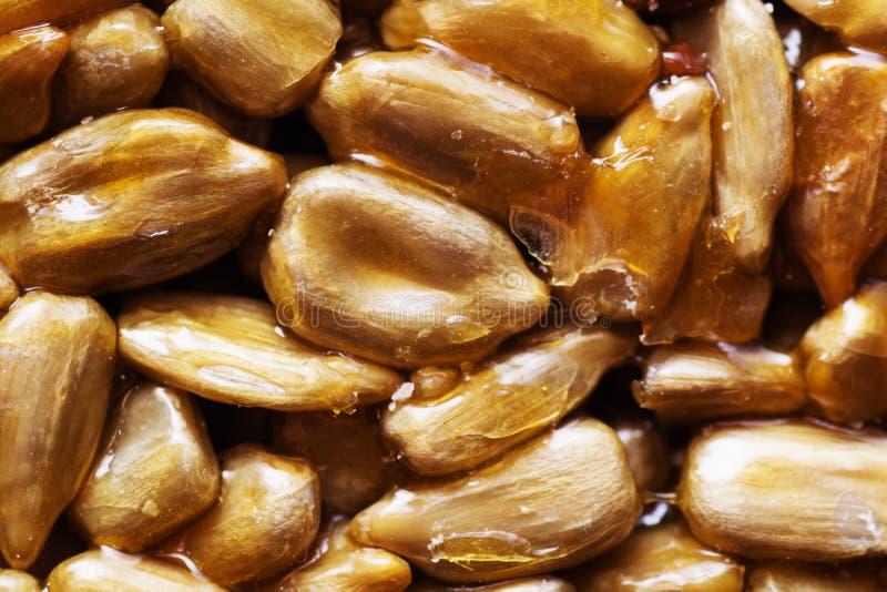 Download Honey bars stock image. Image of dessert, grain, nutrition - 29360073