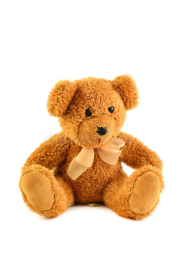 The Honey Bear. stock images