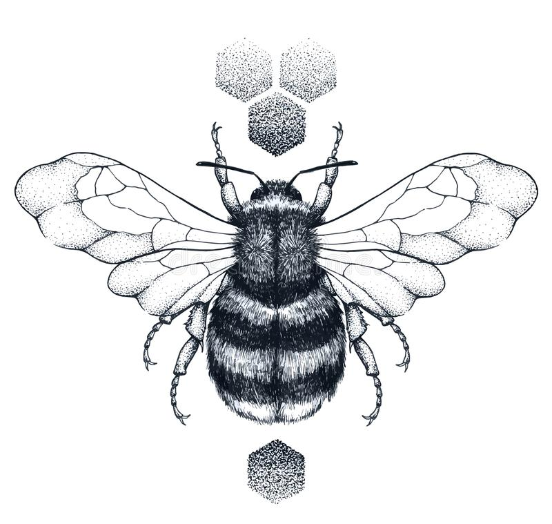 Free Honey Bee And Honeycomb Tattoo. Dotwork Tattoo. Symbol Of Diligence Stock Photography - 151958372