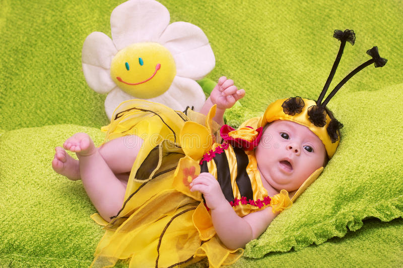 Honey Bee Baby royalty-vrije stock afbeeldingen