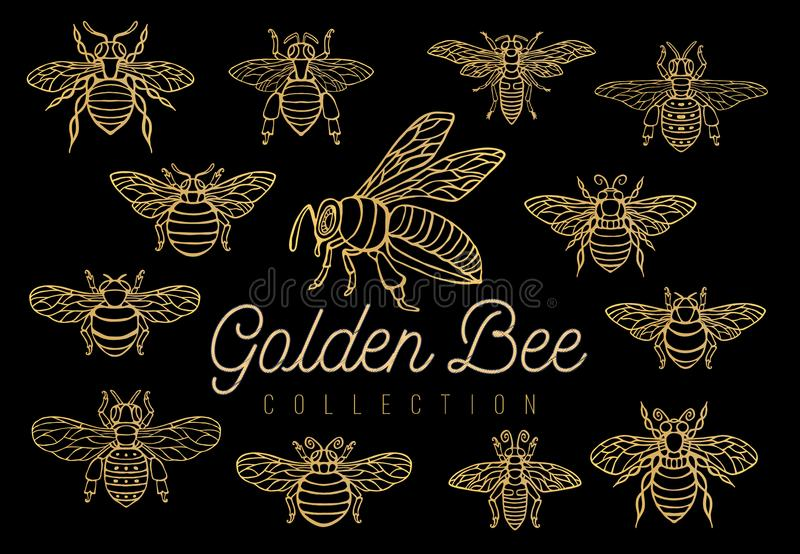 Honey bee bumblebees wasps set sketch style collection insert wi. Ngs emblem symbols Hand drawn vector engraving illustration royalty free illustration