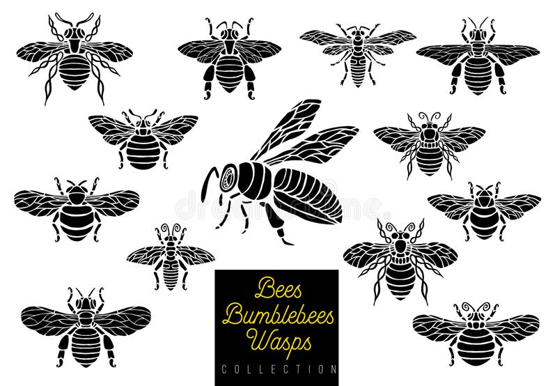 Honey bee bumblebees wasps set sketch style monochrome collection insert wings emblem symbols. Hand drawn vector engraving illustration royalty free illustration
