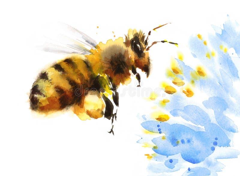Honey Bee Flying Over Blue-Getrokken de Illustratiehand van de Bloemwaterverf royalty-vrije illustratie