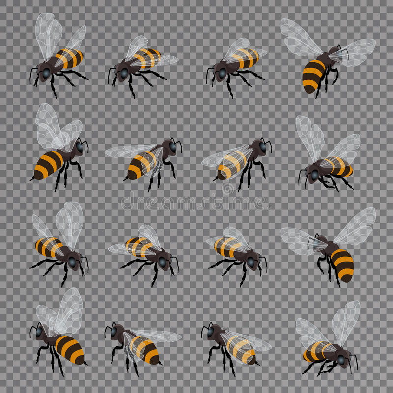 Honey bee vector set on a transparent background. Flat 3d vector isometric illustration. Honey natural healthy food royalty free illustration