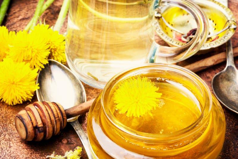 Honey from dandelion flowers stock photography