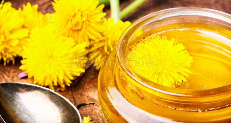 Dandelion honey in jar. Honey from blossoming spring dandelions, as a medicine.Dandelion jam royalty free stock photography