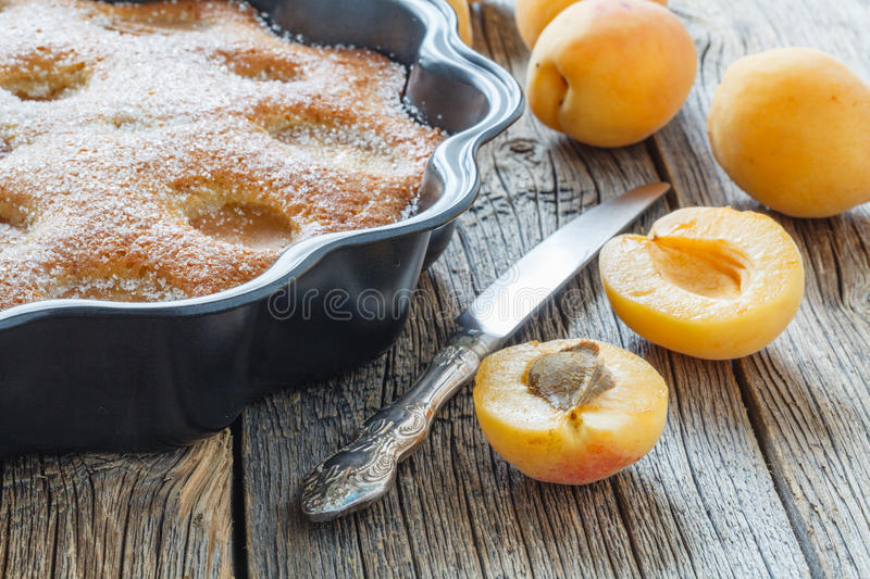 Honey cake with apricots, apricot pie royalty free stock images