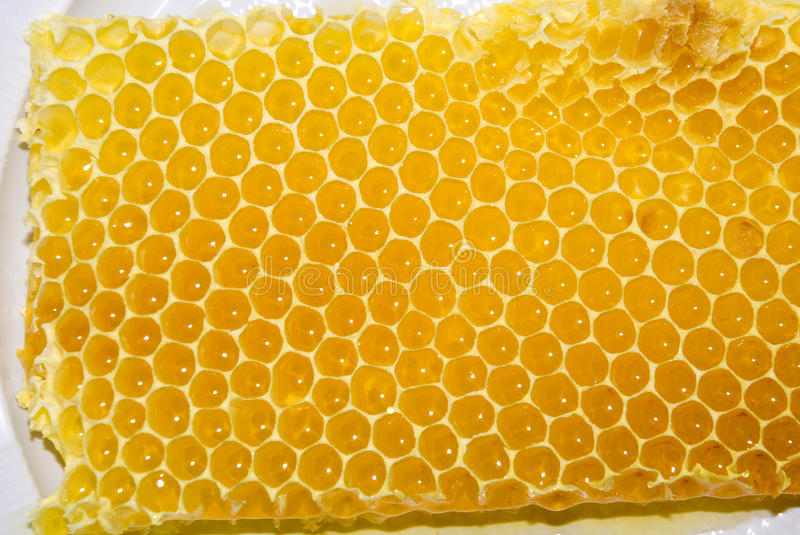 Download Honey Comb Royalty Free Stock Photo - Image: 14139095