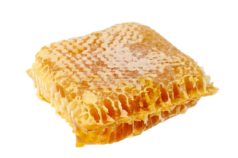 Download Honey comb stock image. Image of portion, isolated, gourmet - 34646753