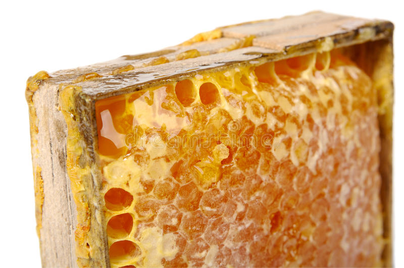 Download Honey comb stock image. Image of liquid, healthy, macro - 34646765