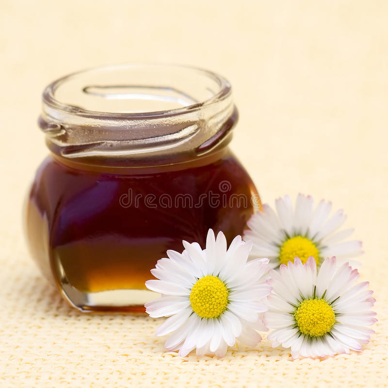 Honey and daisies. Close up of honey and daisies stock photos