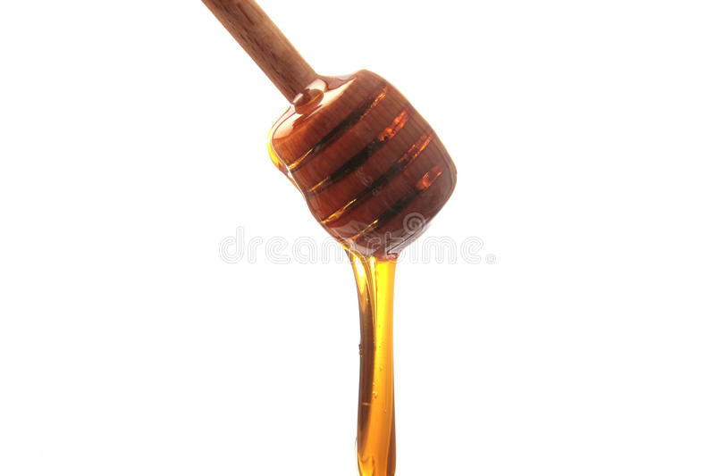Honey dripping. From an honey dripper royalty free stock image