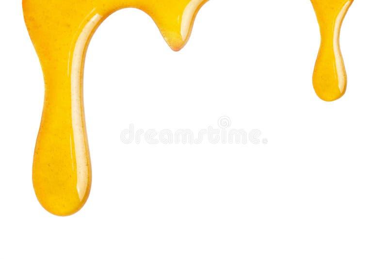 Honey Dripping royalty free stock image