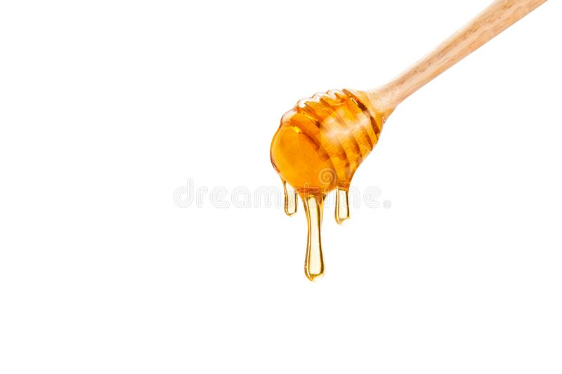 Honey dripping down from a wooden honey dipper, on white background with copy space royalty free stock photos